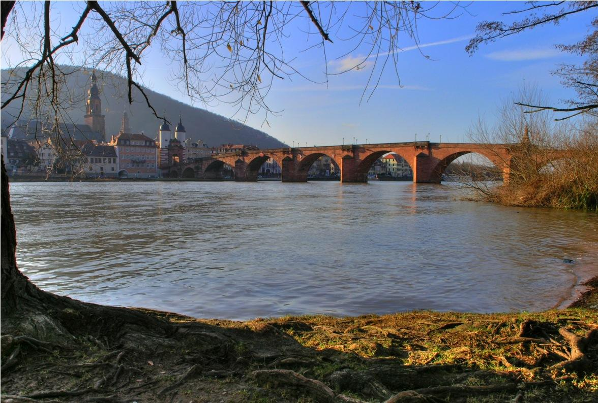 Neckar River - Heidelberg University Hospital