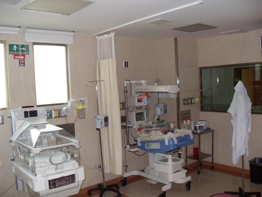 Neonatal Intensive Therapy - Hospital Country 2000