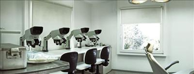 Transmed: Hair restoration and cosmetic surgery